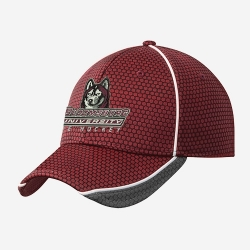 New Era Hex Mesh
